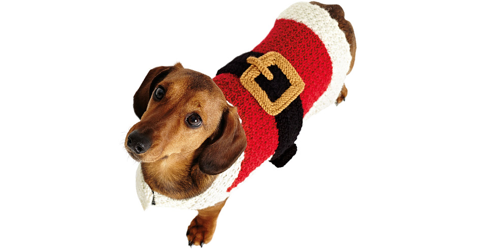 Dog Coat Knitting Pattern Uk : Knit a seasonal santa dog coat for christmas