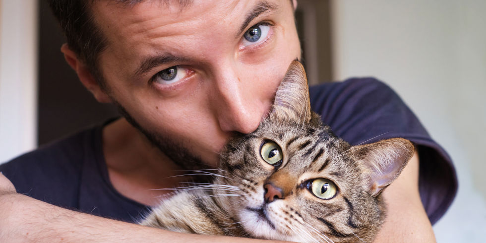 Image result for men and cats